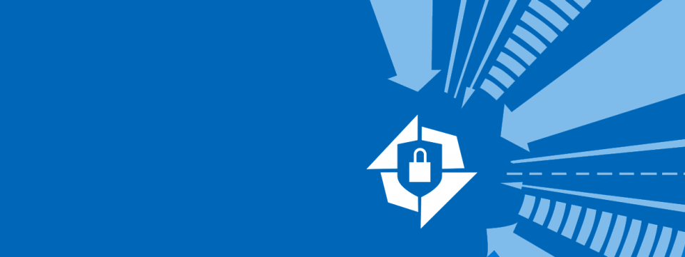 Security in the Microsoft Realm